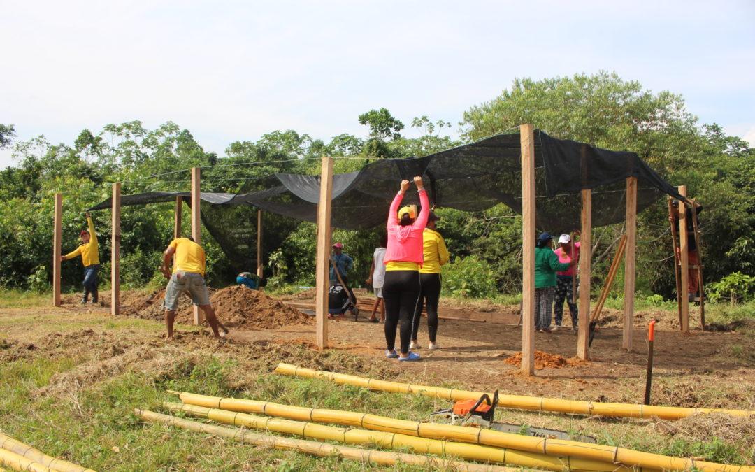 Solicitud de cotización de Insumos Agropecuario – Unión Temporal del Valle del Río Cimitarra