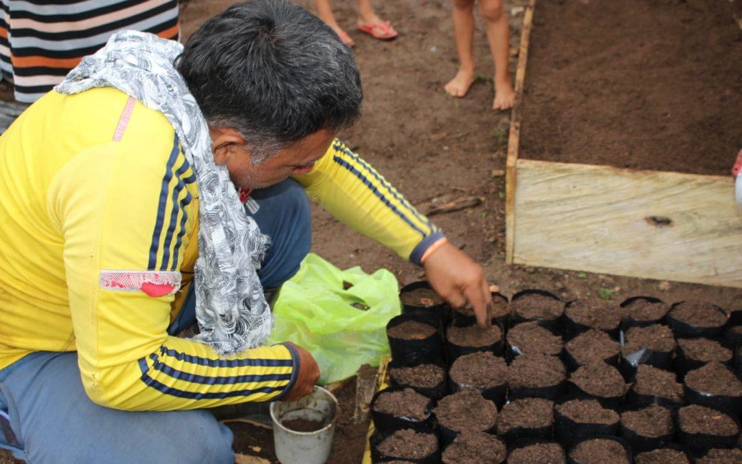 Solicitud de cotización de semillas– Unión Temporal del Valle del Río Cimitarra